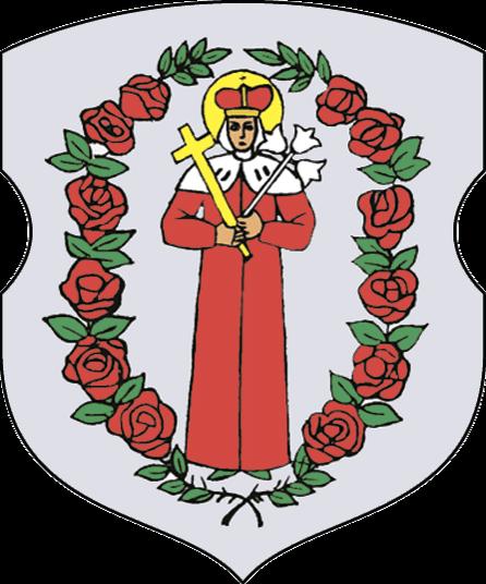 B39 RuzhanyG