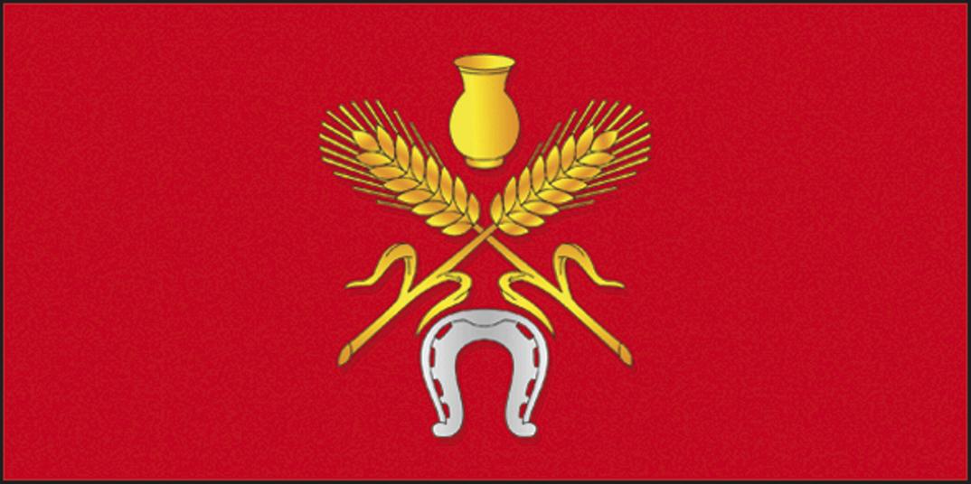 Mg11 KostyukovichiF