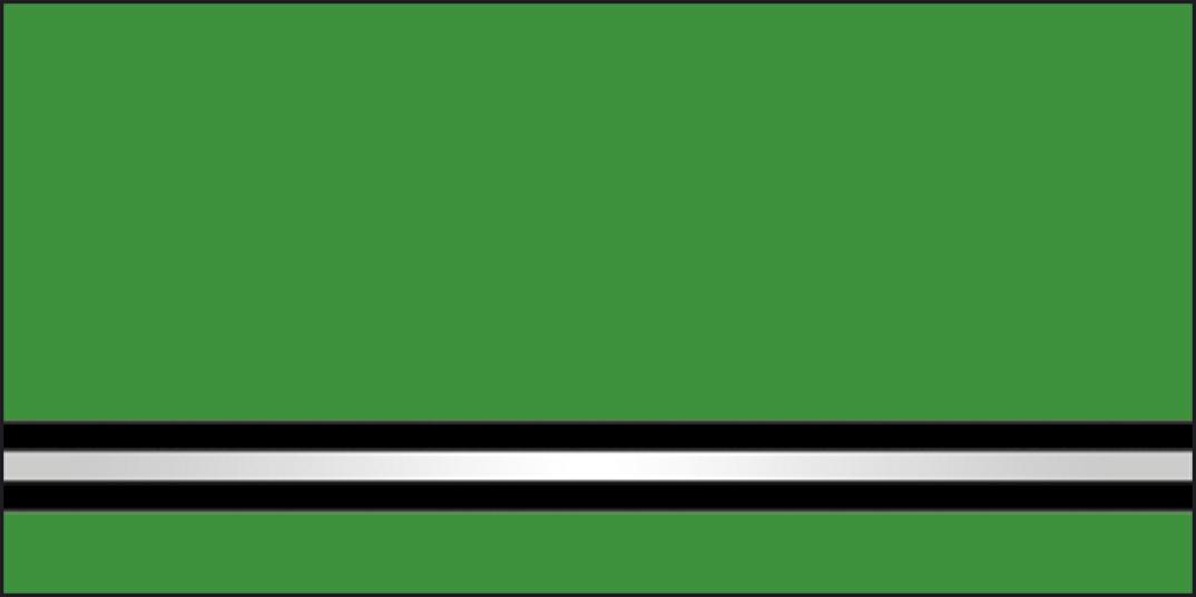 Mg17 OsipovichiF