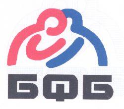 245 Федерация борьбы