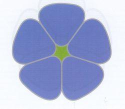 301 Федерация дзюдо