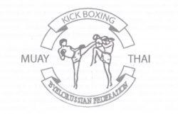483 Кик боксинг