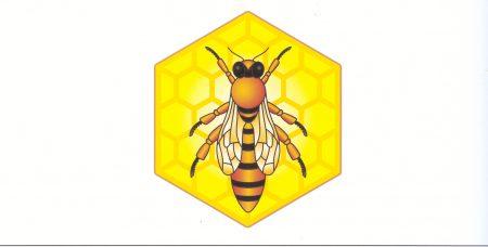 680 Белорусские пчелы